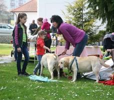 Lázně Slatinice - zahájení sezóny